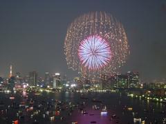 fireworks20040814.jpg
